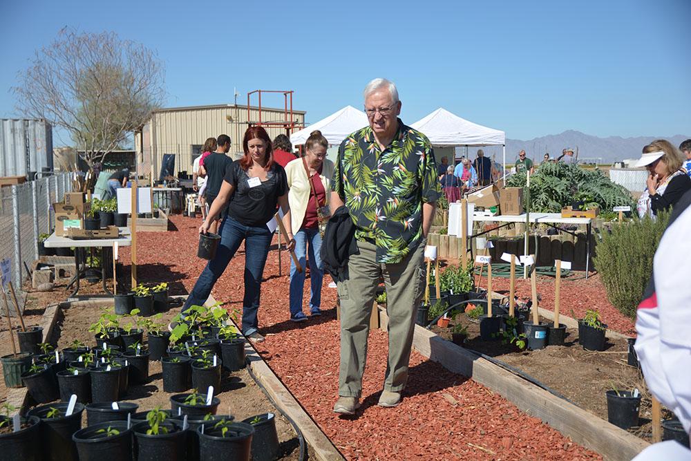 Plant Sale Boosts Master Gardener Program Gallery Inmaricopa
