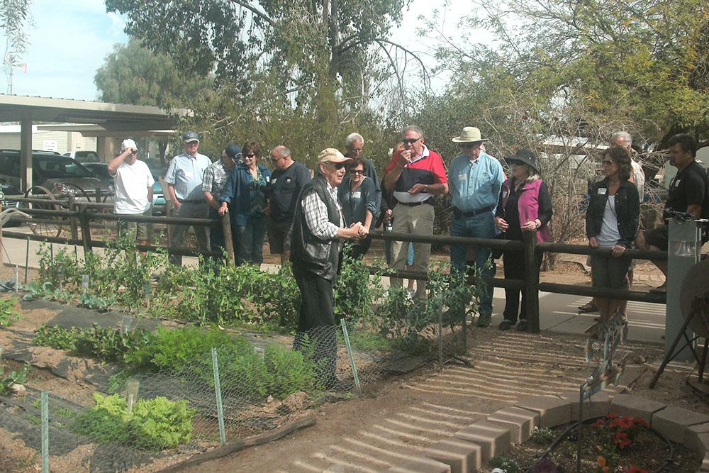 Master Gardener Tips For Fall Gardening In The Desert Inmaricopa