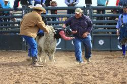 masik-tas-rodeo18_headley_11-2