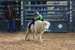masik-tas-rodeo18_headley_12-2