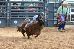 masik-tas-rodeo18_headley_14-2