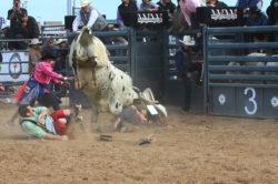 masik-tas-rodeo18_headley_15-2