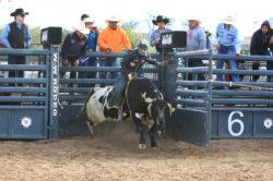 masik-tas-rodeo18_headley_2-2
