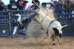 masik-tas-rodeo18_headley_3-2