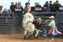 masik-tas-rodeo18_headley_4-2