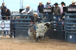 masik-tas-rodeo18_headley_5-2