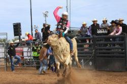 masik-tas-rodeo18_headley_7-2
