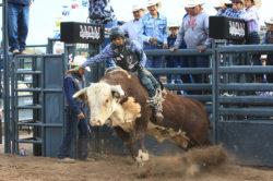 masik-tas-rodeo18_headley_9-2