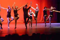 mhs-dance_icons_16-2