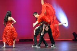 mhs-dance_icons_18-2